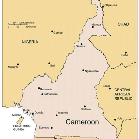 Cameroon Map for PowerPoint, Major Cities and Capital